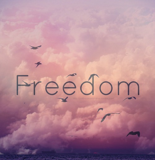freedom via tumblr image 1647542 by aarons on favimcom