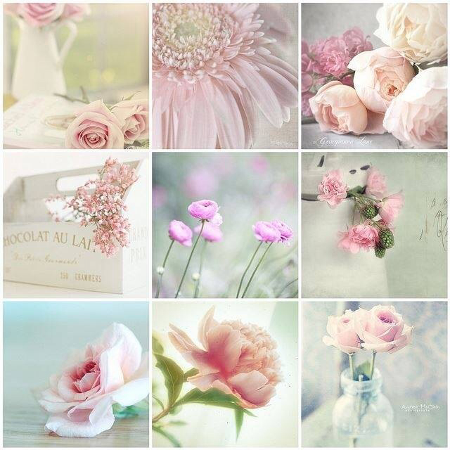 beautiful, beauty, collage and flowers