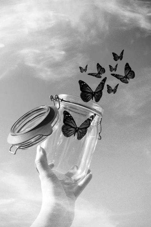 black and white, butterfly, cute, girl, hand, jar, love, pattern, pretty, sky, wallpaper