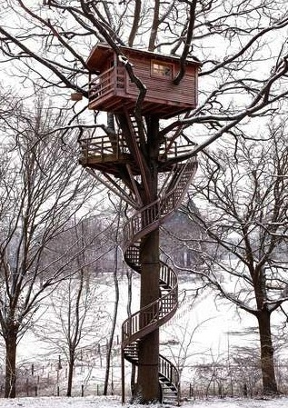 Tree houses from around the world image 2084143 by for Cutest house in the world