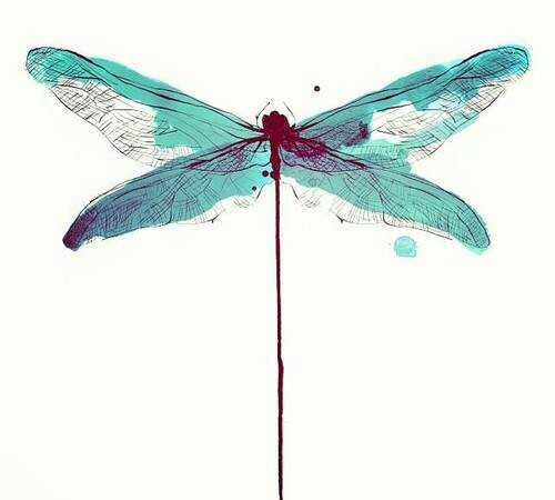 animal, beautiful, blue and dragonfly