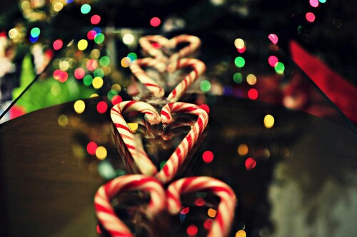 candy canes, christmas and holidays