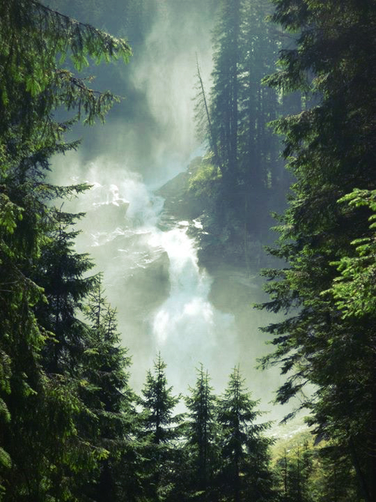 austria, fog, foggy, forest, holiday, moss, nature, stone, summer, tree, trees, water, waterfall