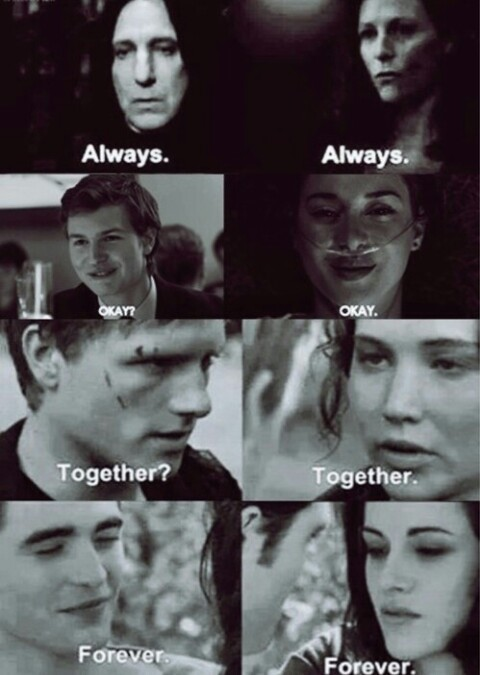 always, forever, harry potter and hunger games