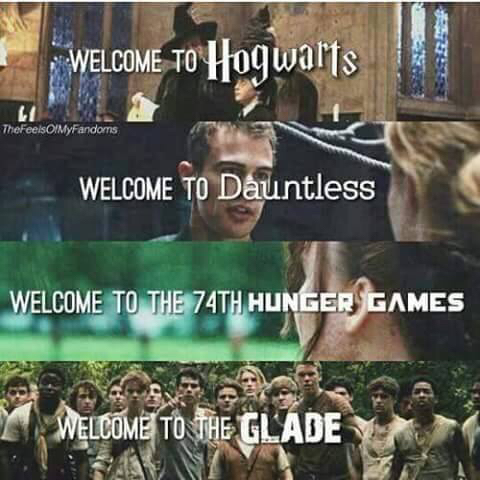 always, book, books, dauntless, divergent, fandom, fandoms, forever, glade, harry potter, heart, heart it, hogwarts, hunger games, love, movie, movies, the hungergames, we heart it, the maze runner