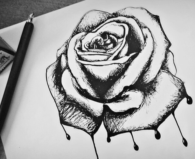 Original size of image 2554542 for Amazing drawings of roses