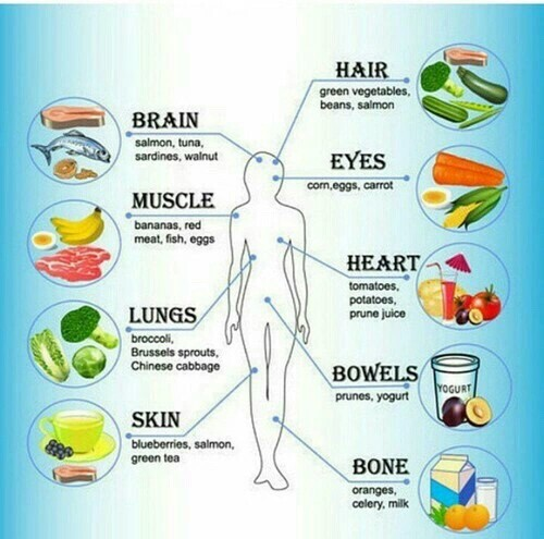 essay about a healthy diet and exercise are good for the body Health and fitness essay - professional essay and research paper writing   benefits of fresh air in various ways find nutrition provides a type of the best,.