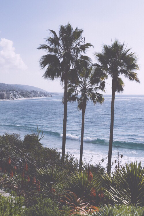 Beach Boho California Indie Paradise Summer Tumblr