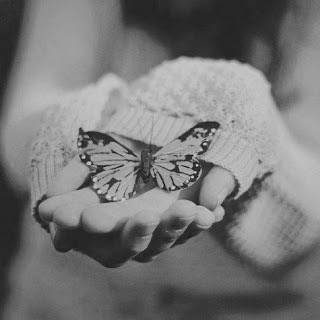animals, beautiful, beautiful disaster, black, black and white, cold, cute, disaster, fly, girl, good, hands, heart, photograph, photography, village, white, wonderland, b&w