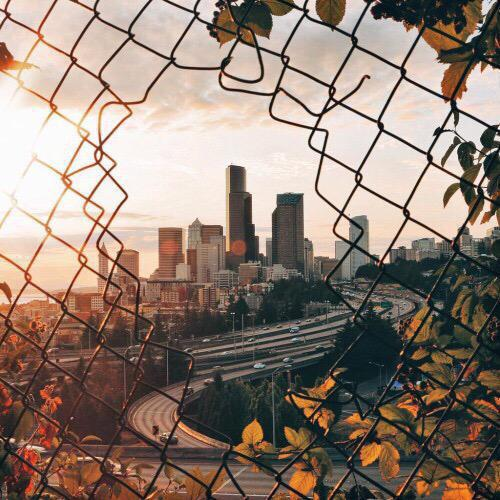 aesthetic, autumn, bright, city, fall, fence, grunge, hipster, sun
