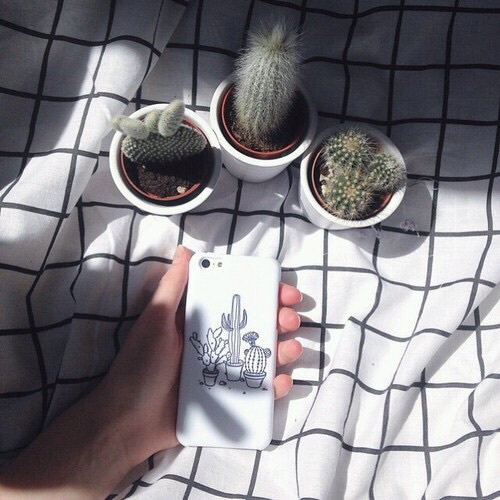 cactus, cover, grass, love, lovely, nature, photo, picture, plants, tumblr, weheartit