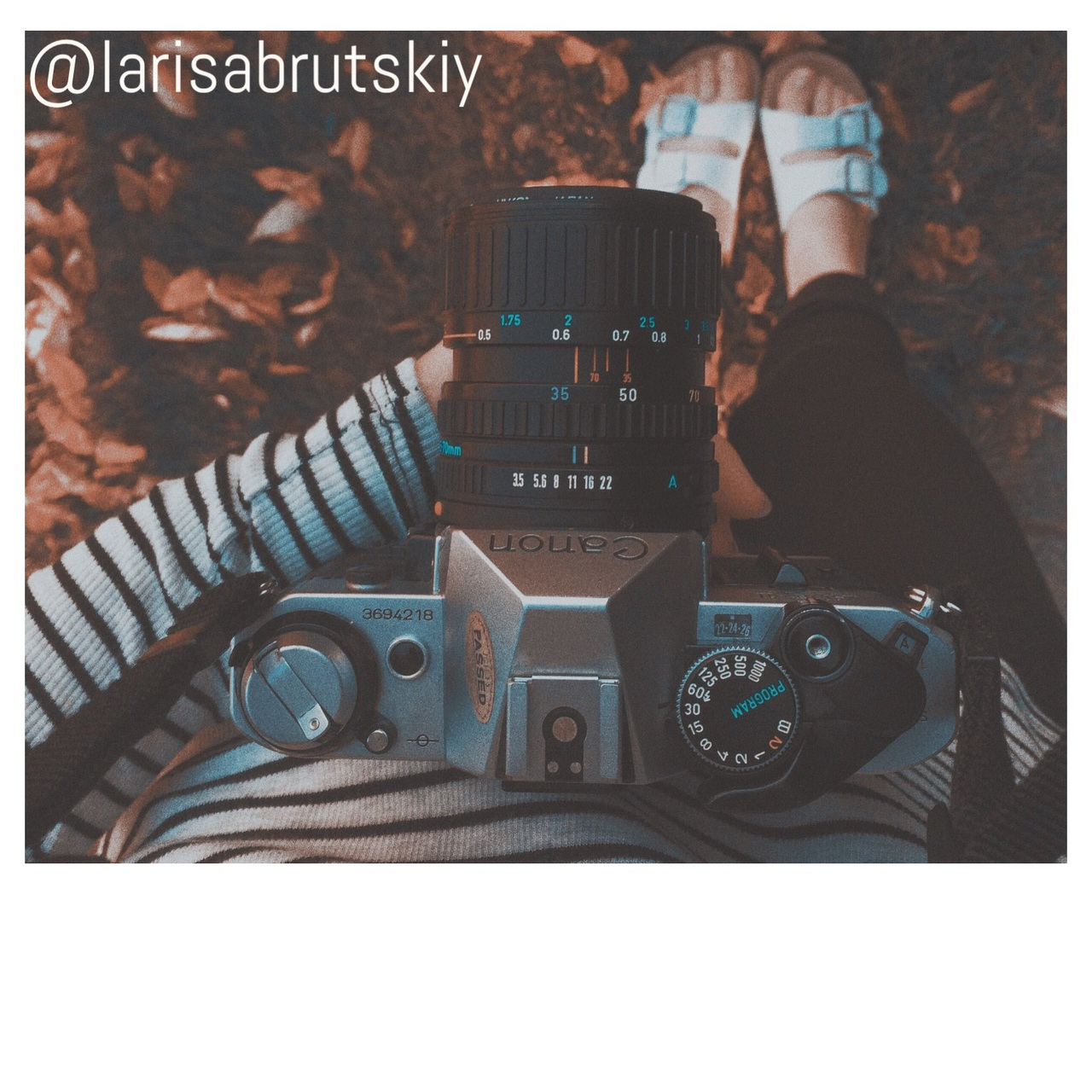 autumn, books, cali, camera, cute, explore, fall, fashion, girl, girls, grunge, halloween, leaves, love, morning, nature, night, photography, pretty, shoes, style, travel, usa, wanderlust, birkenstocks