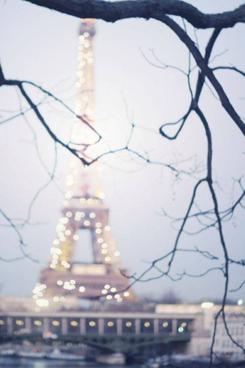 2015, beautiful, christmas lights, christmas shopping, christmas tree, christmas wish, city, city of love, dream, france, gifts, in love, love, paris, someday, the eiffel tower, tower, tree, want, wish, wow, 2016, city of light, will go there