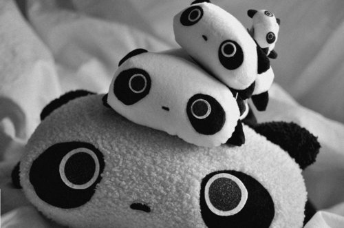 adorable, cute, doll, kawaii, pandas