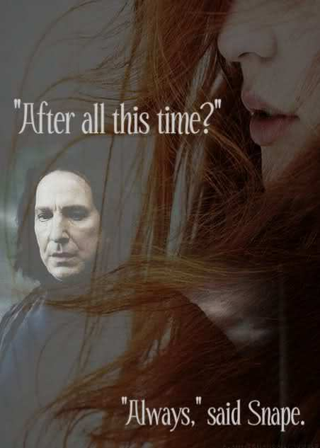 After All This Time Harry Potter Lilly Severus Image