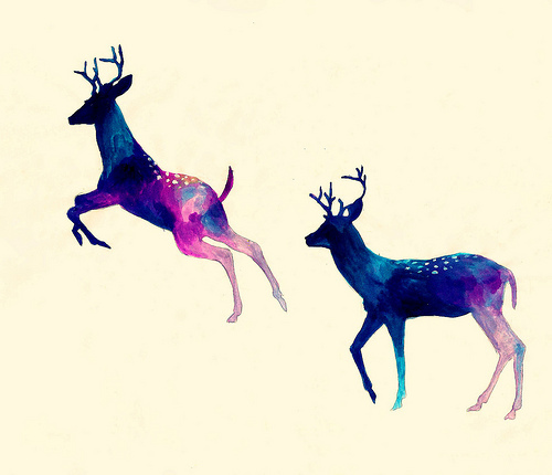 animal, deer, draw