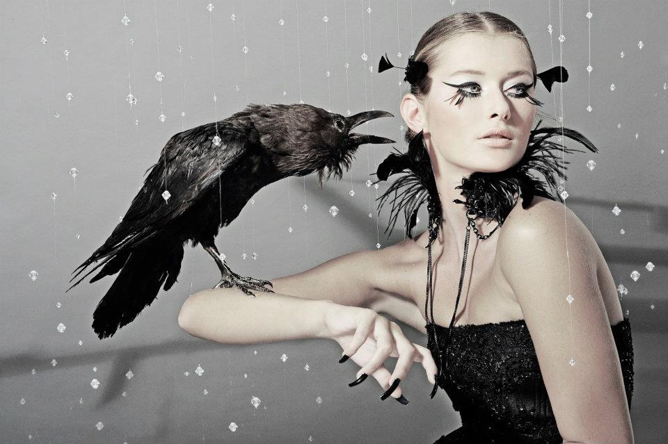 art, beautiful, bird, black&amp;white, diamonds