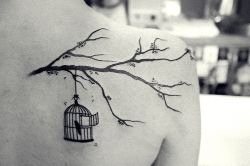 art, birdcage, black, black and white, cute