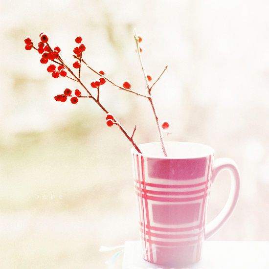 awesome, cranberry, cup, flower, love