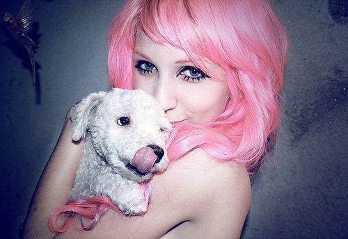 awn, cute, dog, girl, pink hair