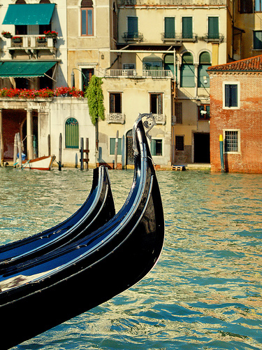awsome, beautiful, canal, city, cool, europa, europe, flowers, gondola, gondole, house, italia, italy, lindo, love, lovely, lucy, nice, photo, photography, pretty, travel, venecia, venezia, venice, viajes, water