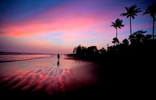 beach, bitch, heaven, palm, pink