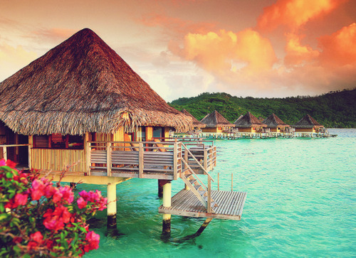 beach, blue, bohemian, boho, exotic, flowers, house, island, ocean, sea, sky, summer, water