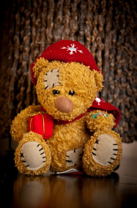bear, christmas, macro, photography, present
