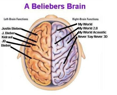 belieber, beliebers, bieber, book, brain