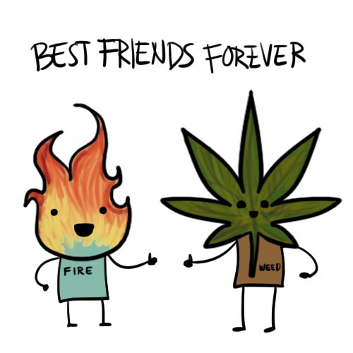 best, fire, forever, friends, funny