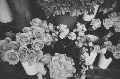 black and white, flower, flowers, gif, rose, roses, style