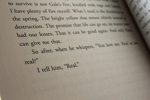 book, couple, cute, hunger games, i cried reading this