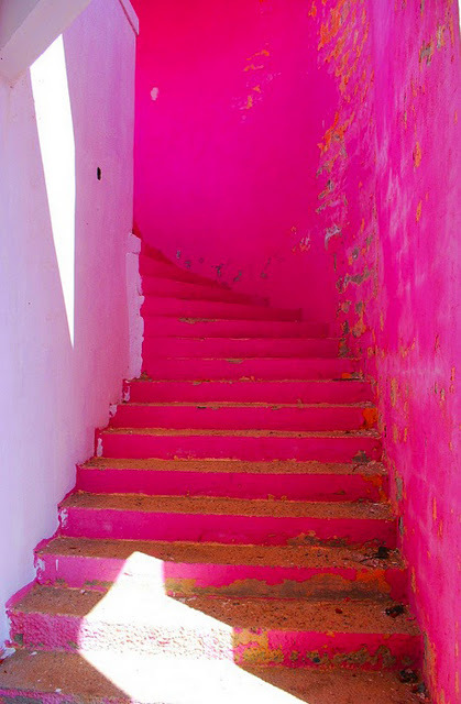 bright, fluor, neon, paint, painted, photography, pink, stairs, travel