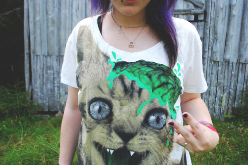 cat, cool, drop dead, funny cat, funny kitten, girl, green, hair, hair purple, kitten, nice, photo, photography, purple, shirt, style, sweet, t-shirt, violet