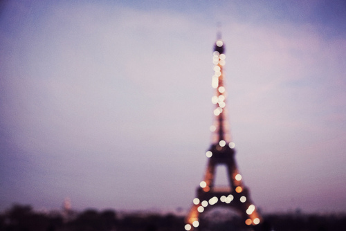 city of lights, eiffel tower, france, lights, paris