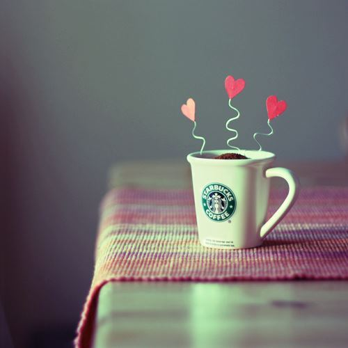 colours of life, love, starbucks