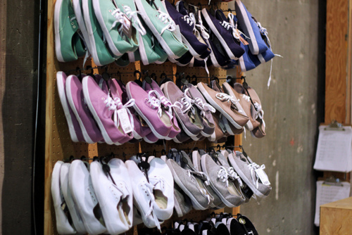cute, shoes, stau, vans