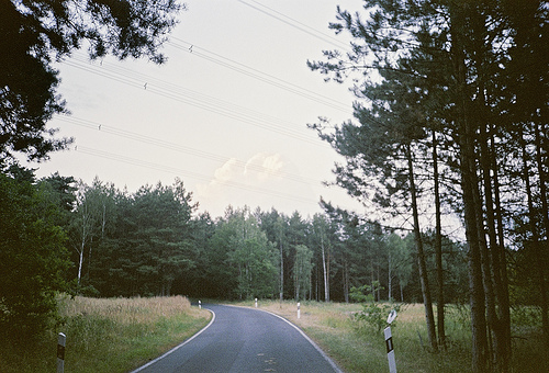 forest, hipster, landscape, nature, photography, road, street