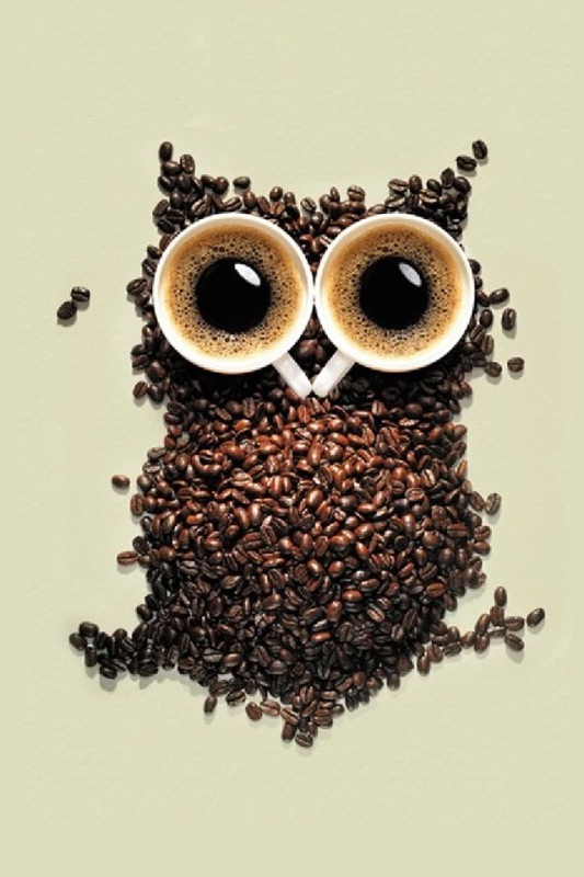 animal, big eyes, brown, coffee, owl