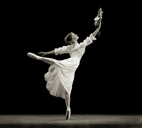 ballerina, ballet, black and withe, dancer, dancing