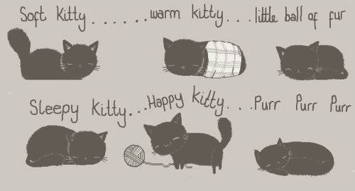 bang, big, cooper, kitty, sheldon