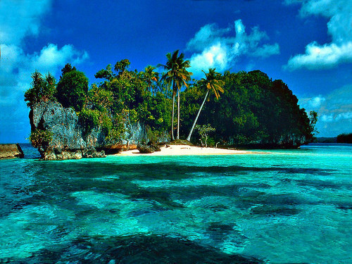 beach, island, lake, ocean, palm