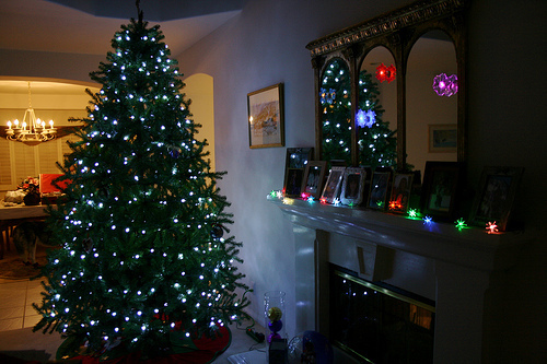 beautiful, christmas, cute, home, house, light, lights, photo, photograph, photography, room, tree