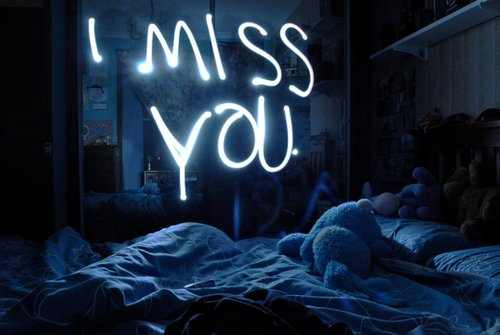 bed, bunny, i miss, i miss you, miss