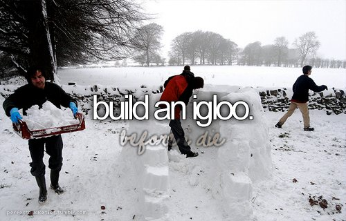 before i die, bucket list, ice, igloo, perfect bucketlist