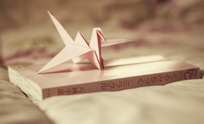 bird, book, books, paper, paper art