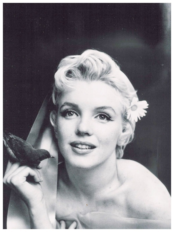 black and white, blonde, diva, girl, marilyn monroe
