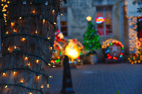 bright, christmas, colors, decorations, festive, lights, pretty, tree