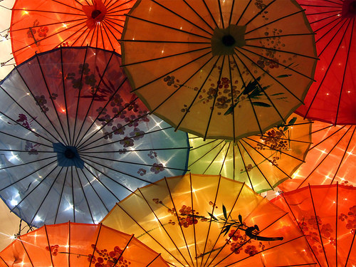 color, parasol, photography, umbrella