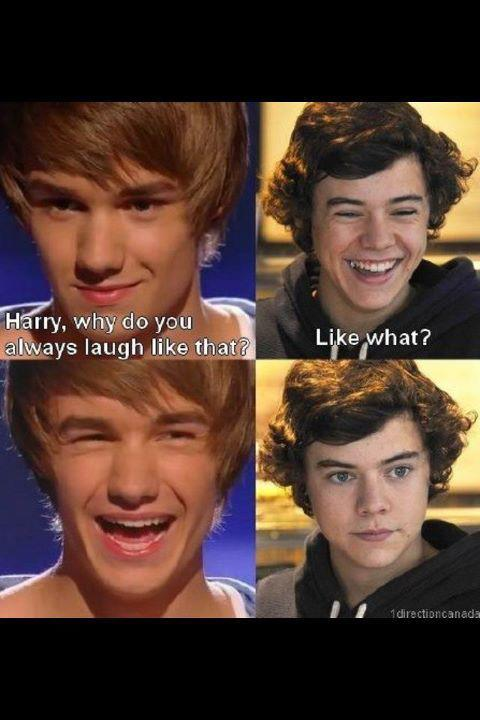cute, funny, harry styles, liam payne, one direction